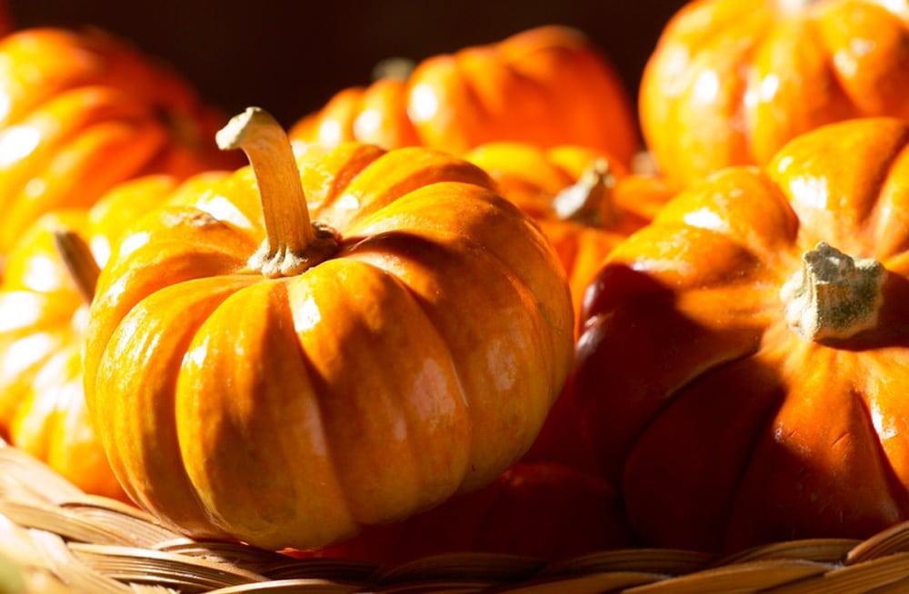 halloween quiz für erwachsene